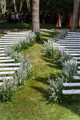 越人间仙境一场古堡里的薰衣草婚礼
